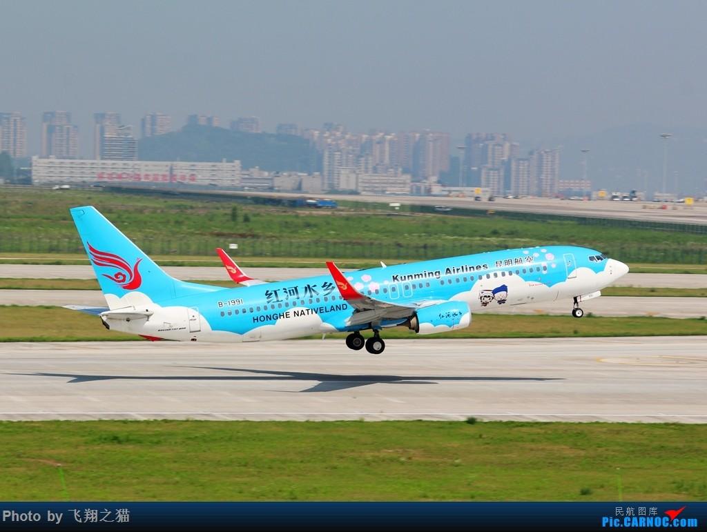 Re:CKG拍机(酷热拍机,收获满满!) BOEING 737-800 B-1991 重庆江北国际机场