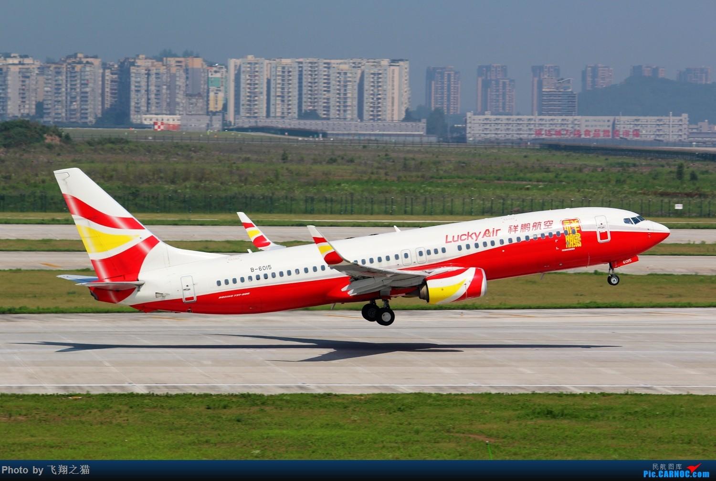 Re:[原创]CKG拍机(酷热拍机,收获满满!) BOEING 737-800 B-6015 重庆江北国际机场