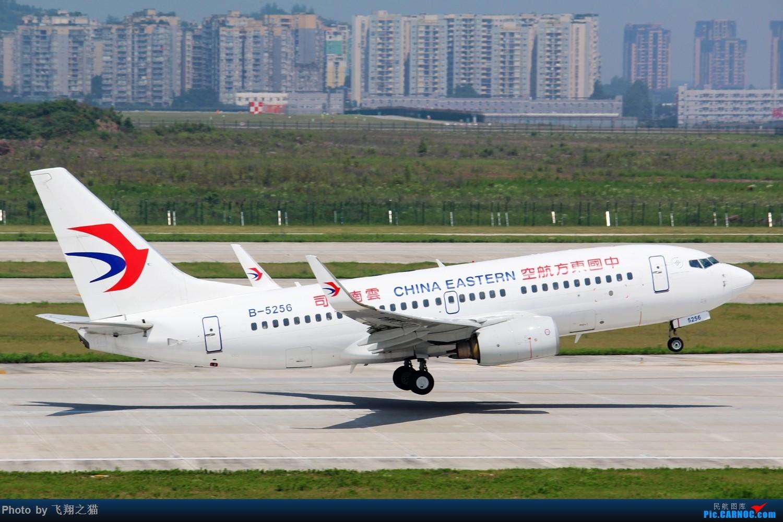 Re:[原创]CKG拍机(酷热拍机,收获满满!) BOEING 737-700 B-5256 重庆江北国际机场