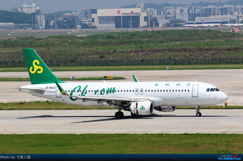 Re:[原创]CKG拍机(酷热拍机,收获满满!) AIRBUS A320-200 B-8427 重庆江北国际机场