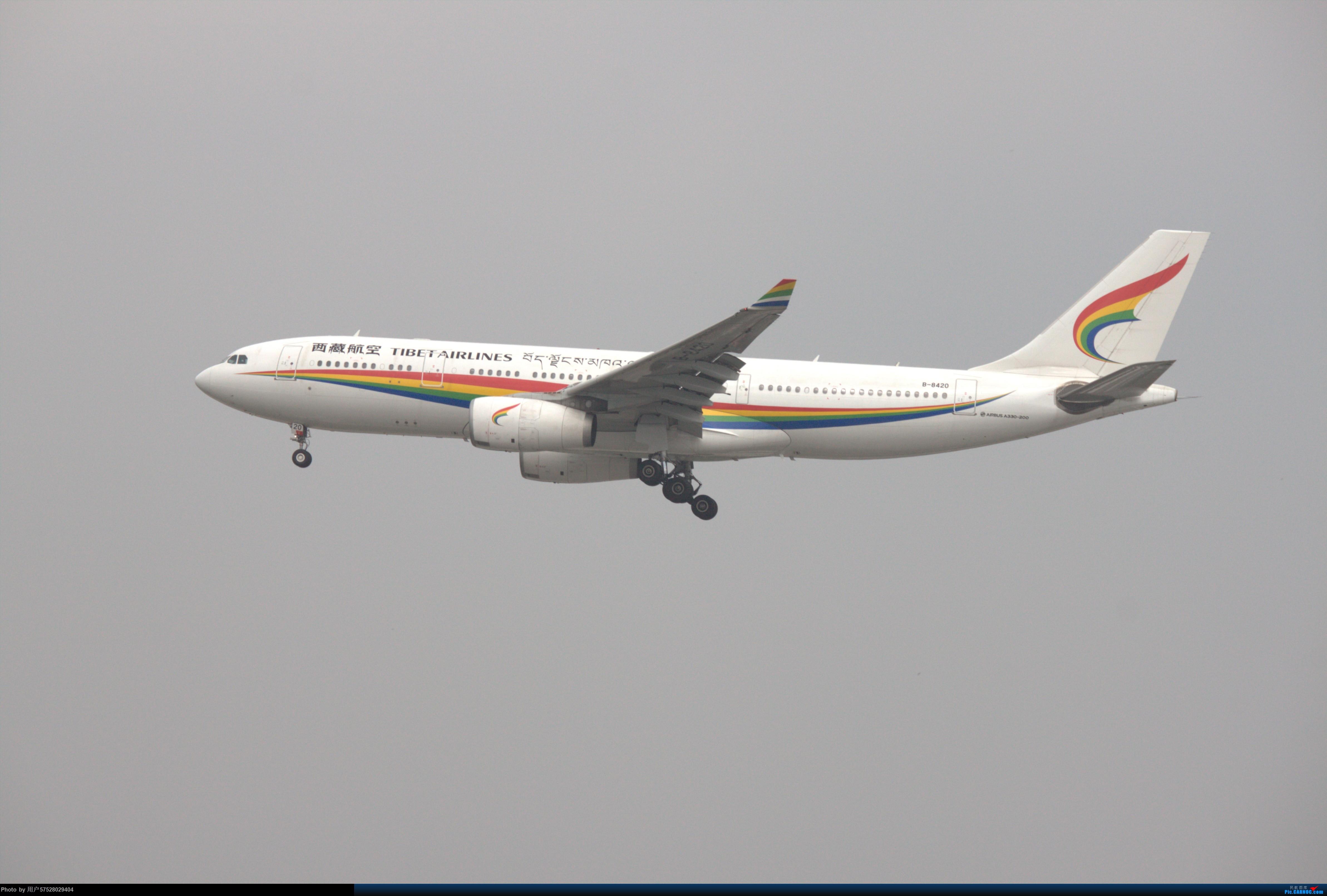 Re:[原创]2018.06.10拍机 AIRBUS A330-200 B-8420 中国上海虹桥国际机场