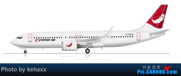 Re:[原创]自己设计的 飞机涂装两张