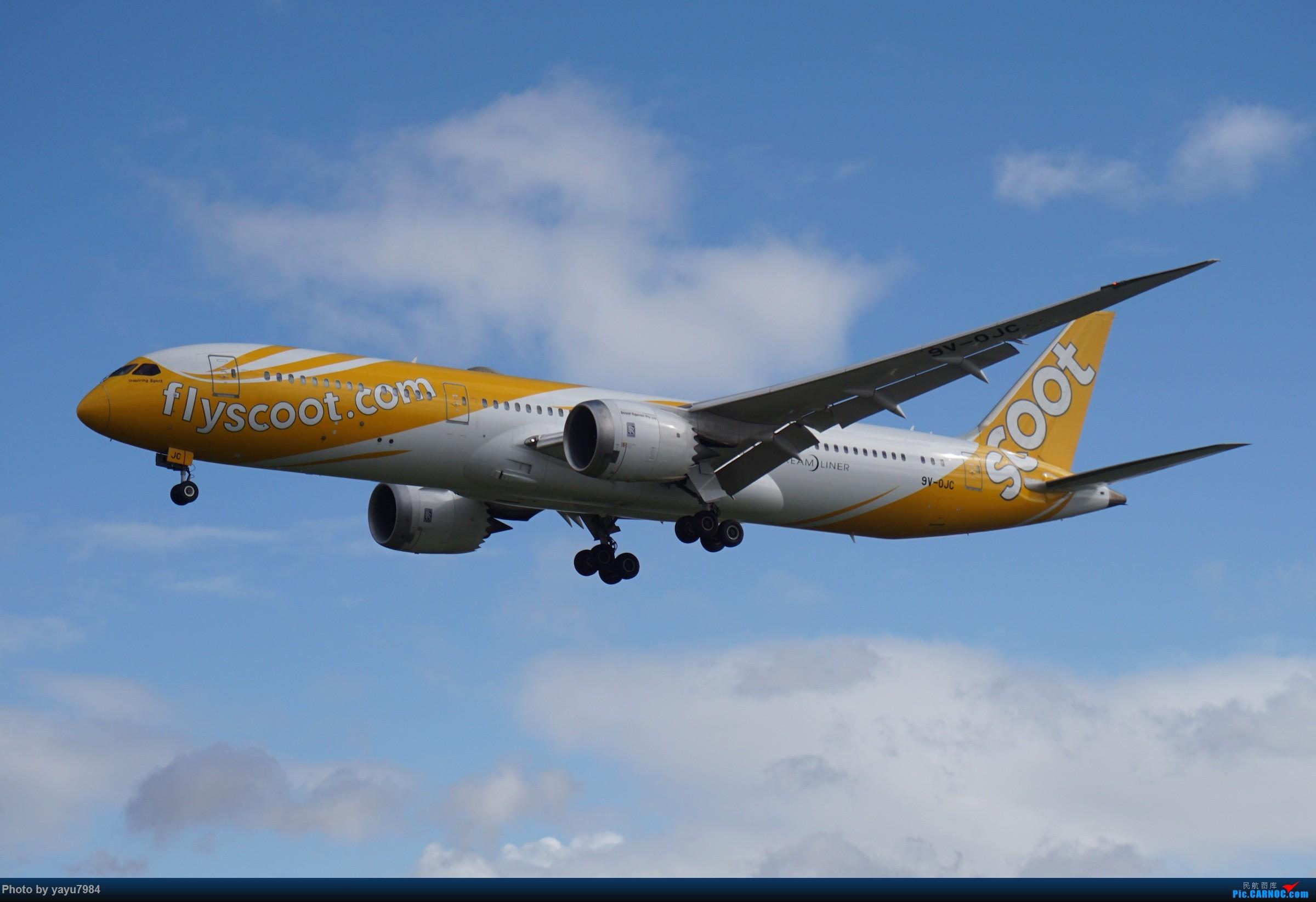Re:[原创][SYD] 近期随摄,收获颇多 BOEING 787-9 9V-OJC 澳大利亚悉尼金斯福德·史密斯机场