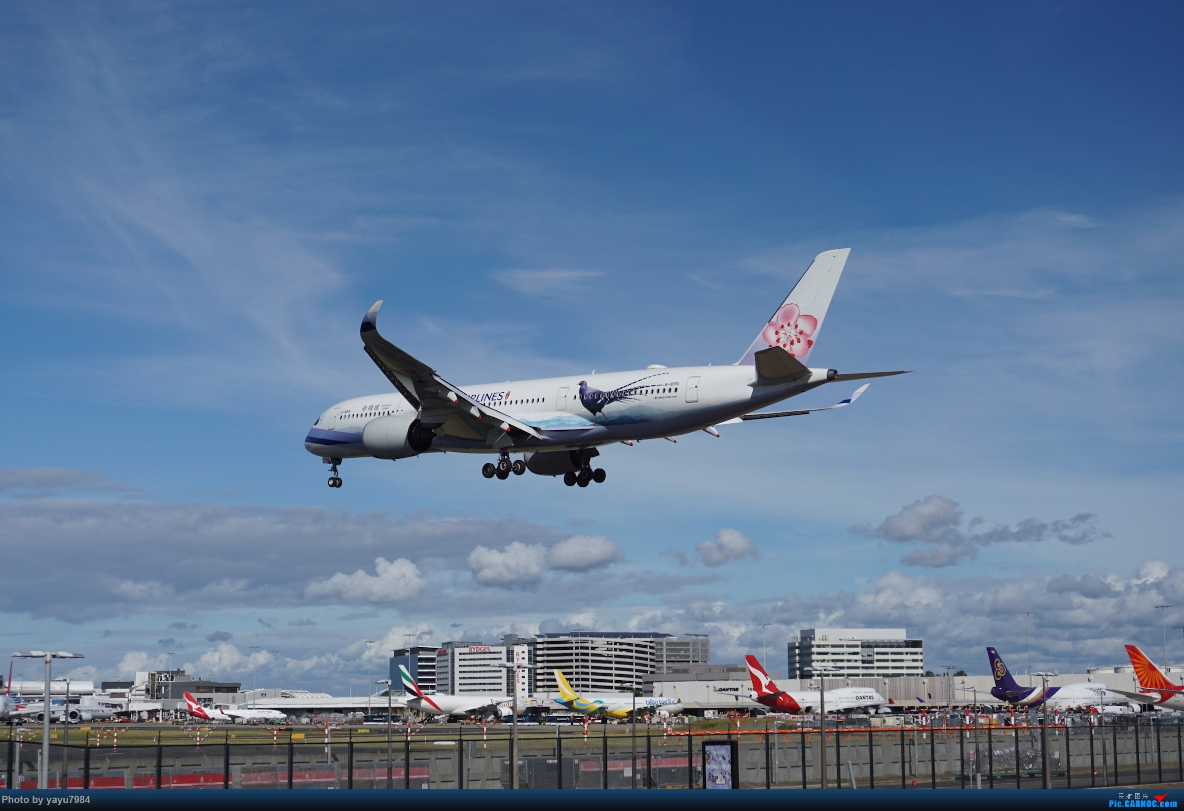 Re:[SYD] 近期随摄,收获颇多 AIRBUS A350-900 B-18901 澳大利亚悉尼金斯福德·史密斯机场