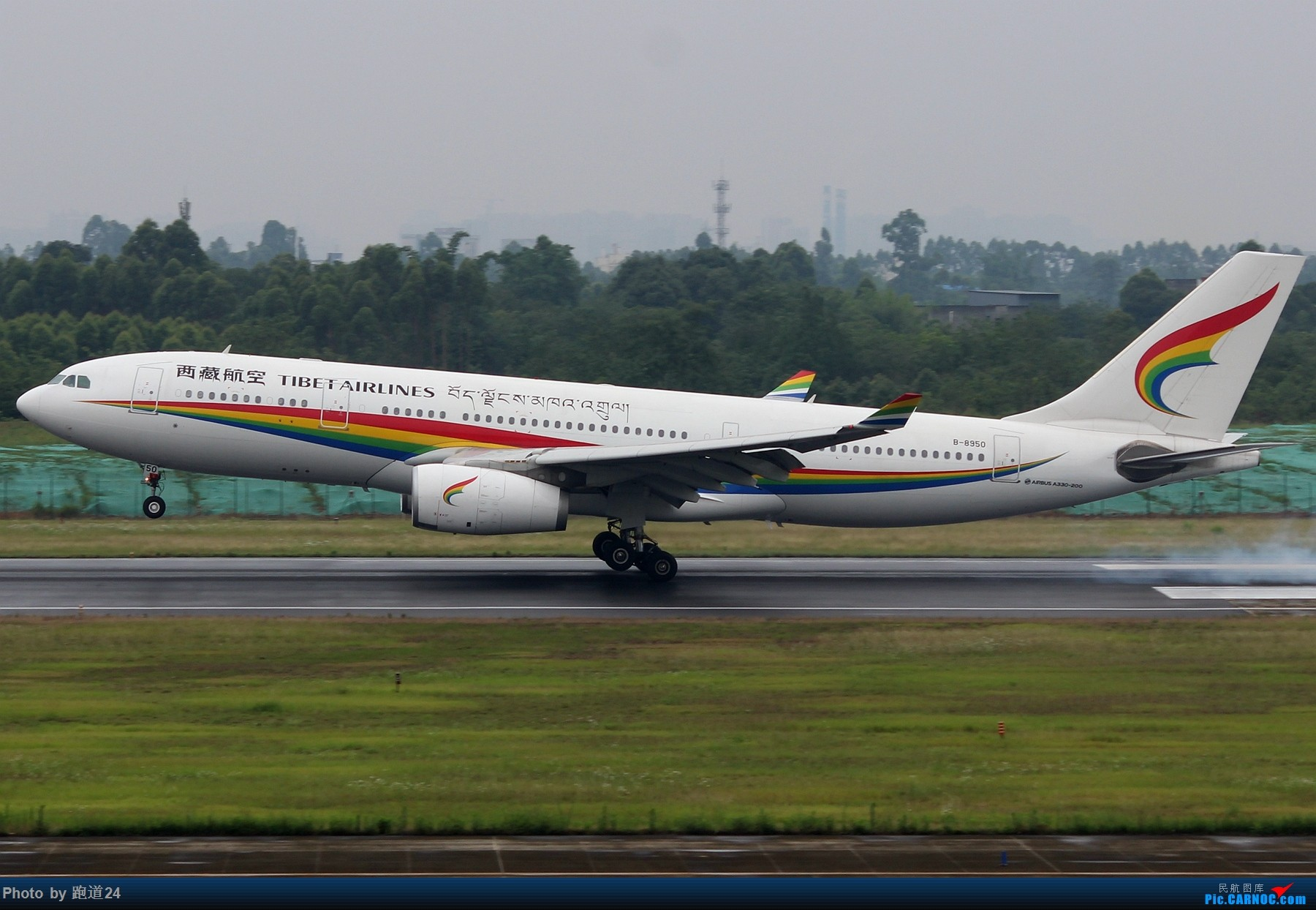 Re:[原创][多图党]6.15CTU拍机集锦【美联788,南方B73MAX】 AIRBUS A330-200 B-8950 中国成都双流国际机场