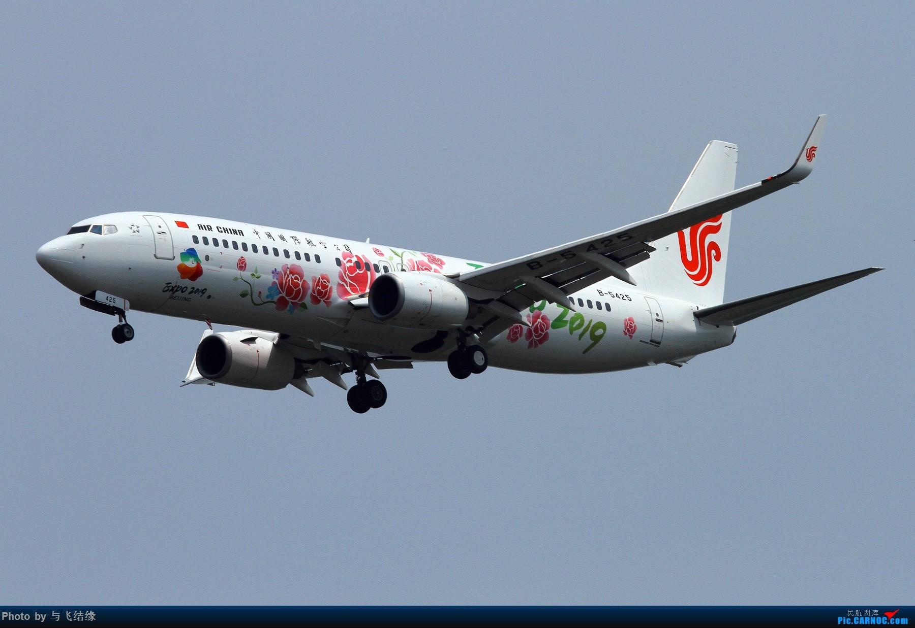Re:也发国航2019世园彩绘机。 BOEING 737-800 B-5425 中国北京首都国际机场