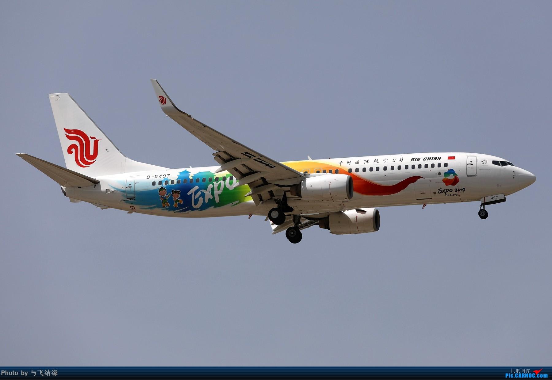 Re:也发国航2019世园彩绘机。 BOEING 737-800 B-5497 中国北京首都国际机场
