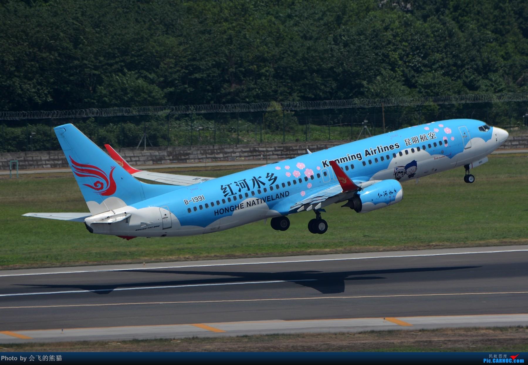 Re:不挑 BOEING 737-800 B-1991 中国成都双流国际机场