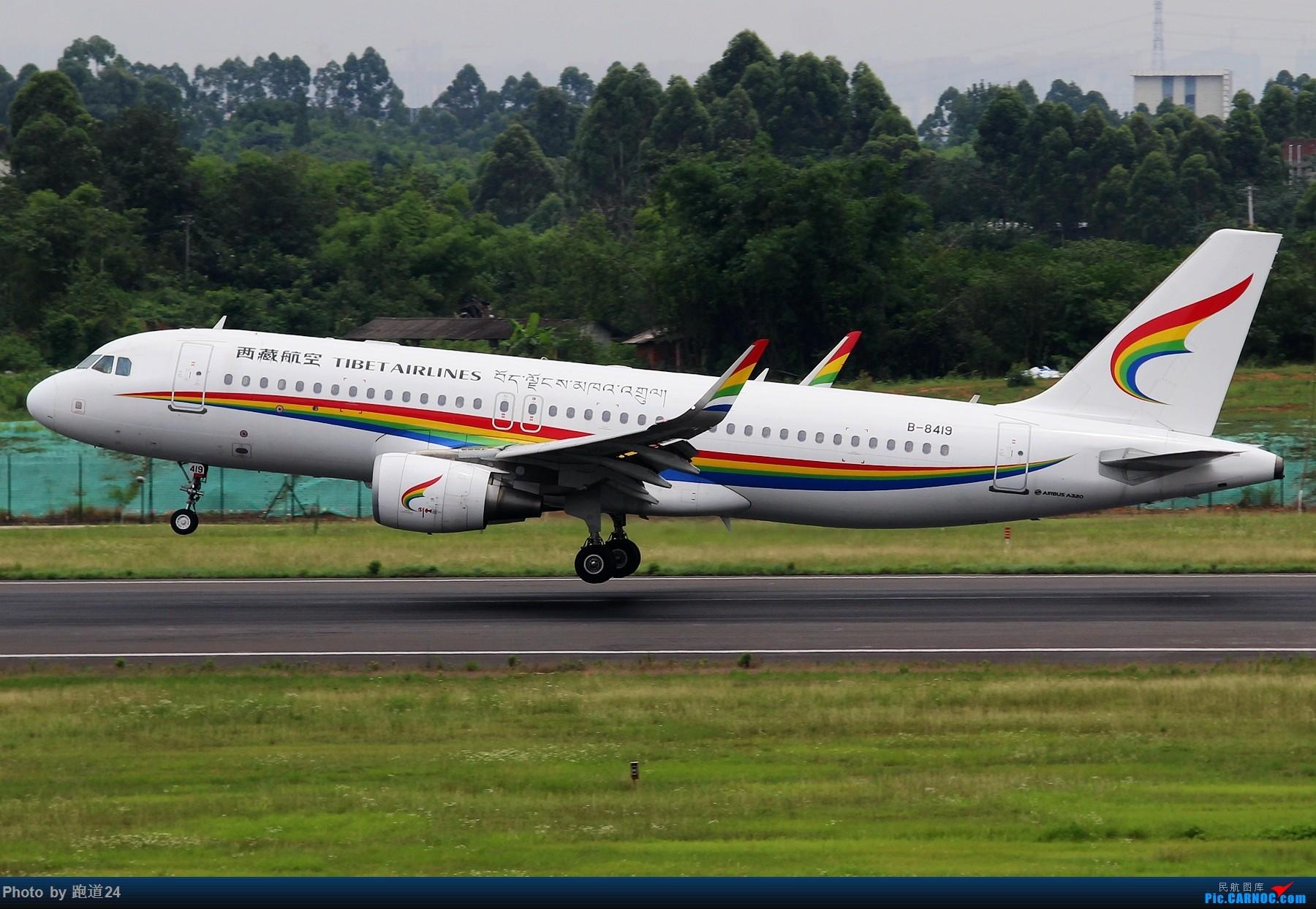 Re:[原创]【多图党】6.28CTU再浪一波 AIRBUS A320-200 B-8419 中国成都双流国际机场