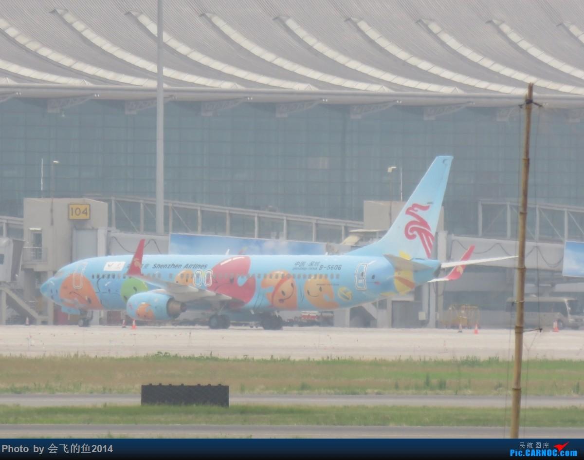 Re:[原创]桃仙机场56月拍机,四川航空首次用333飞沈阳-温哥华航线 738