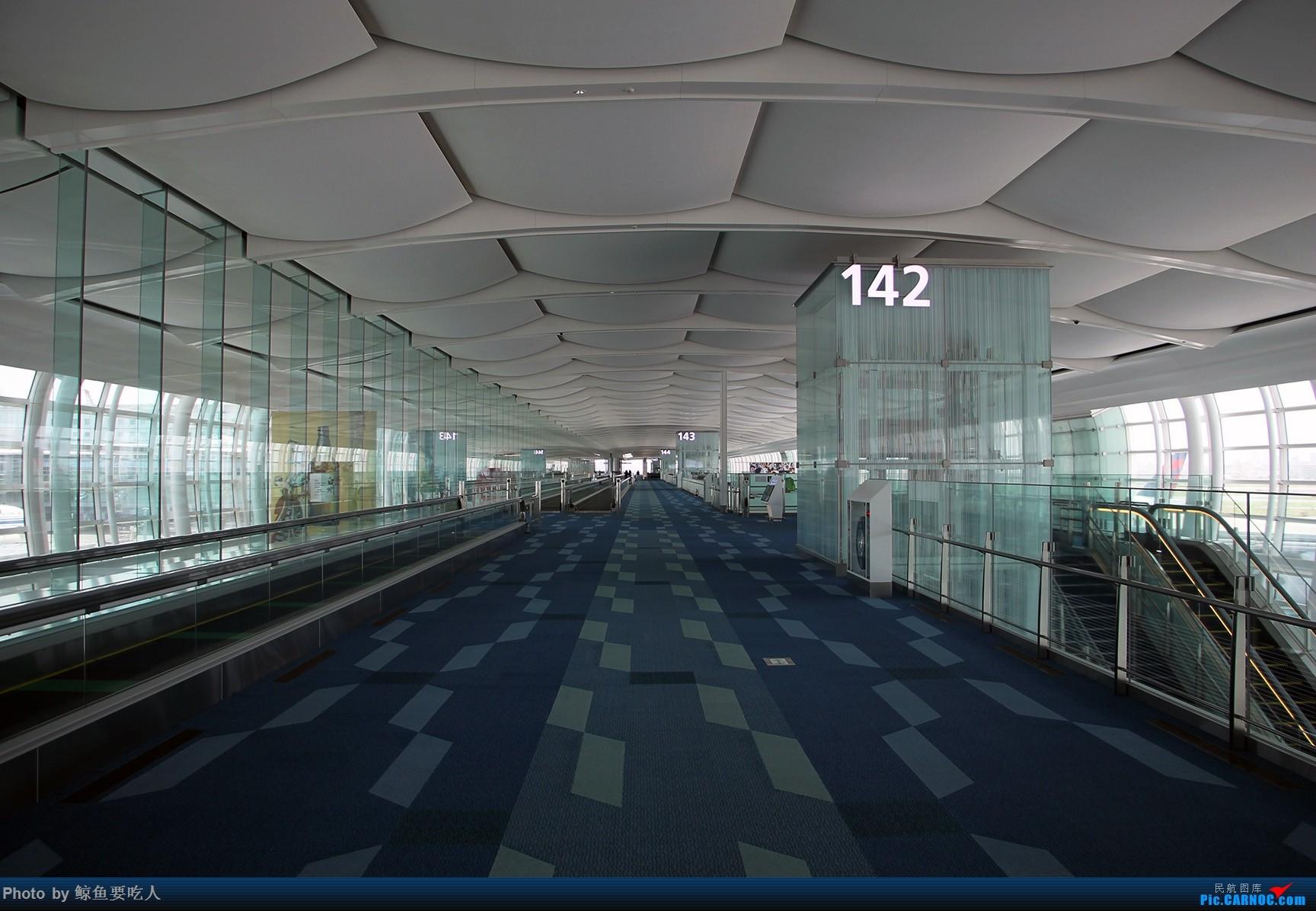 Re:[原创]梅雨季节的日本行:北海道+东京 6日自由行 南京--札幌--东京--上海虹桥 新千岁与羽田的拍机之旅    日本东京羽田国际机场