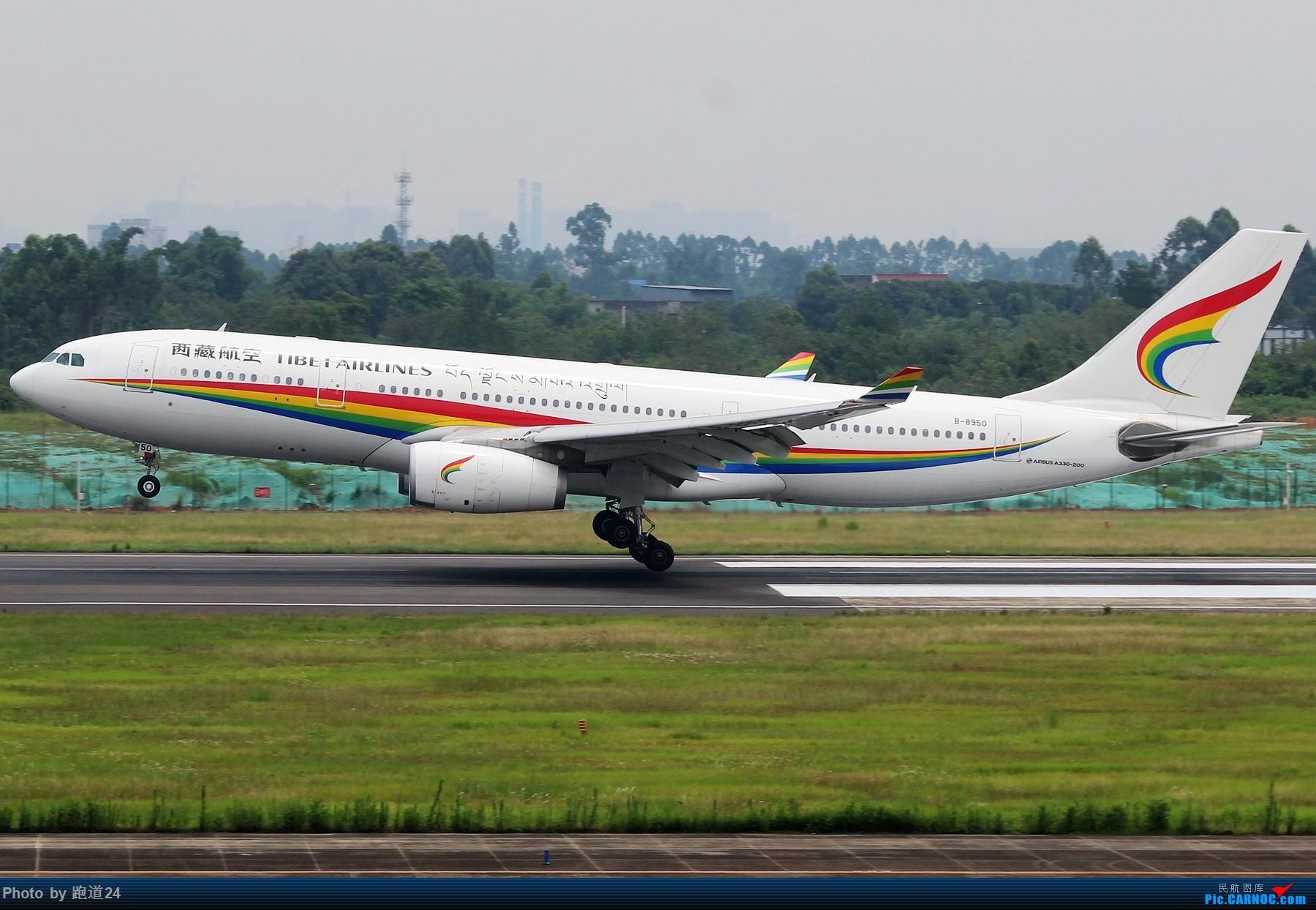 Re:[原创]【多图党】7.6CTU日常拍机 AIRBUS A330-200 B-8950 中国成都双流国际机场