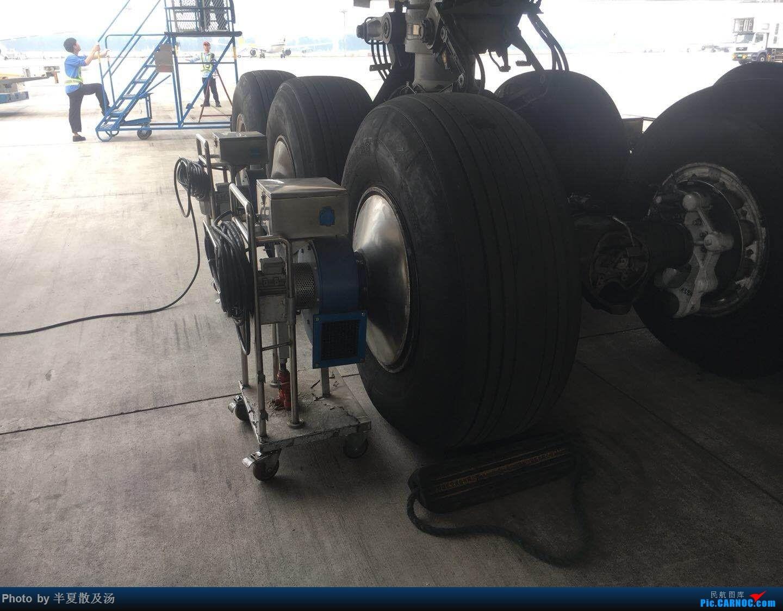 Re:[原创]A380主轮降温作业,道格拉斯抱轮车,747、330,多图 AIRBUS A380
