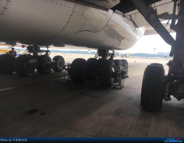 Re:[原创]A380主轮降温作业,道格拉斯抱轮车,747、330,多图 AIRBUS A380-800  中国北京首都国际机场