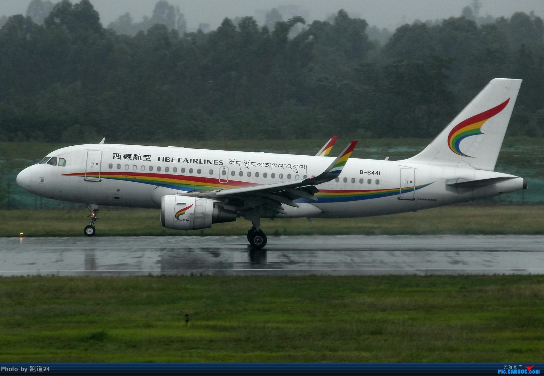 Re:[多图党]雨天CTU拍机 1800*1200 AIRBUS A319-100 B-6441 中国成都双流国际机场