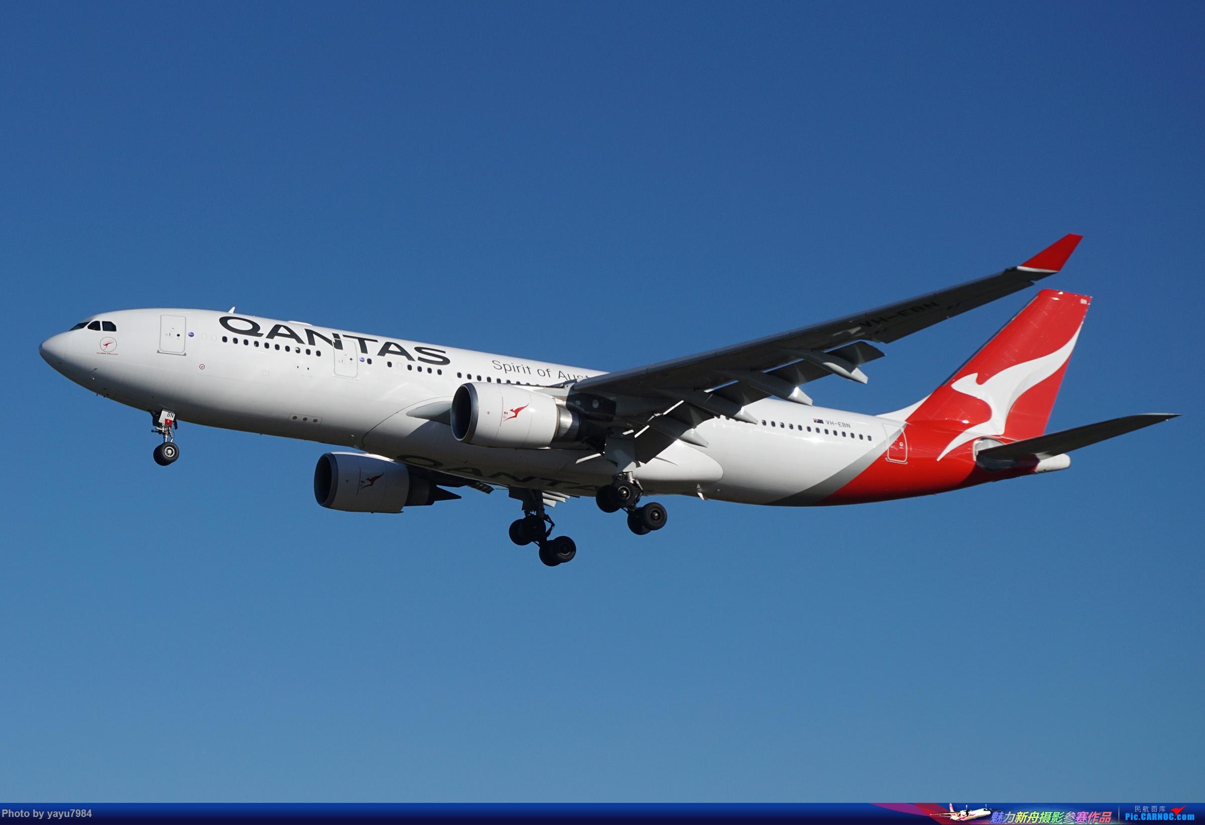 [原创][SYD] 晨悉尼,16R扎堆到达 AIRBUS A330-200 VH-EBN 澳大利亚悉尼金斯福德·史密斯机场
