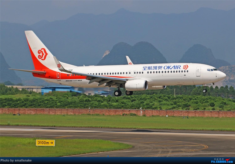 Re:[原创][原创]桂林机场拍机...金鹏787最后时光+南航77F训练... BOEING 737-800 B-1338 桂林两江国际机场