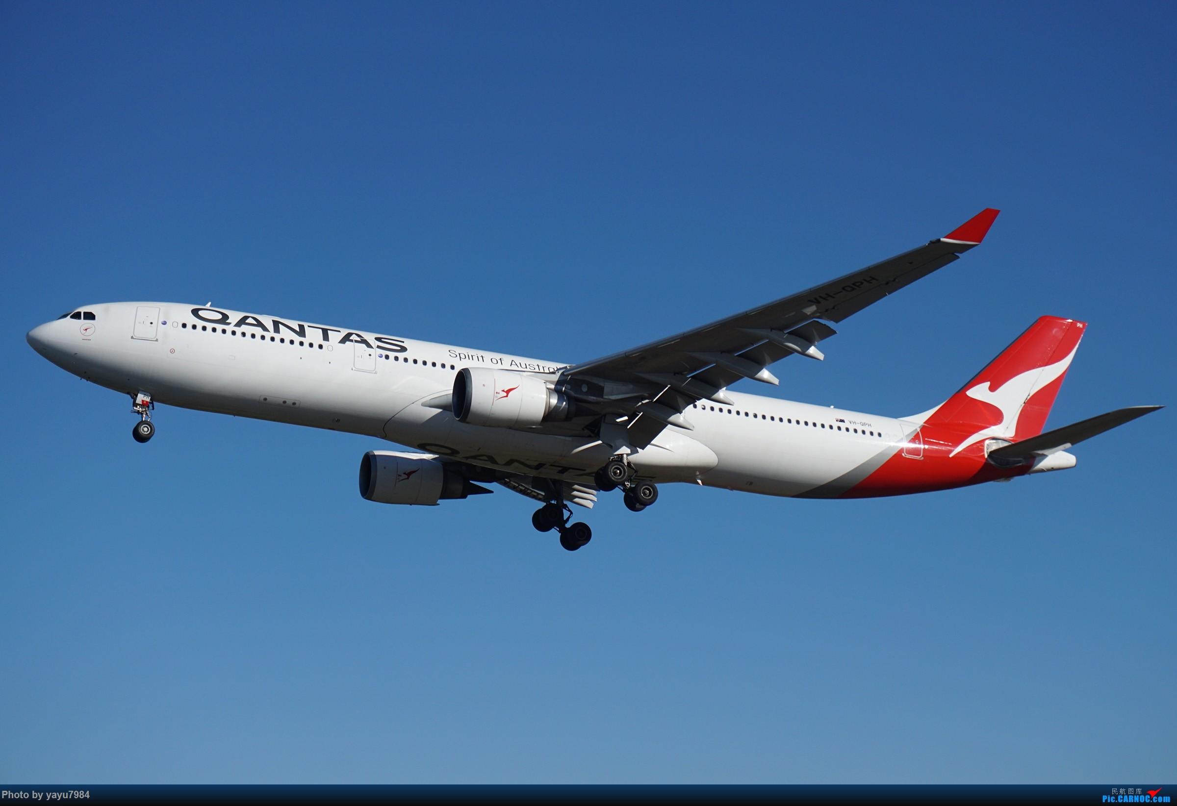 Re:[原创][SYD] 晨悉尼,16R扎堆到达 AIRBUS A330-300 VH-QPH 澳大利亚悉尼金斯福德·史密斯机场