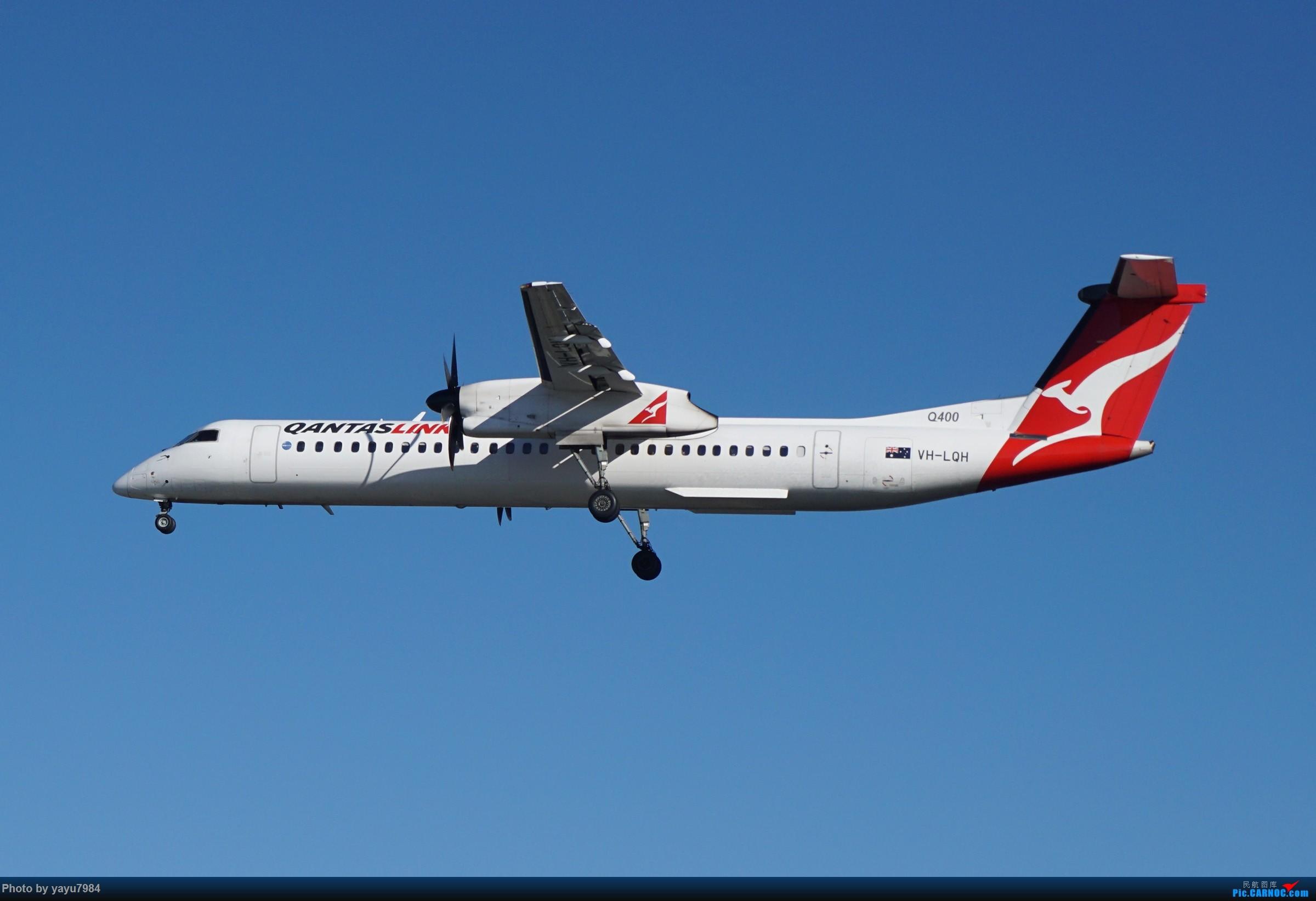 Re:[原创][SYD] 晨悉尼,16R扎堆到达 DE HAVILLAN CANADA DHC-8-400 VH-LQH 澳大利亚悉尼金斯福德·史密斯机场