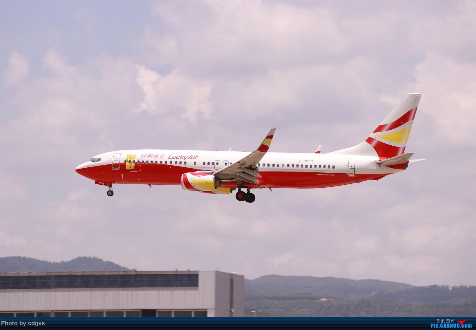 Re:[原创]【KMG】昆明的一天 1600大图 一次看个爽 BOEING 737-800 B-7993 中国昆明长水国际机场
