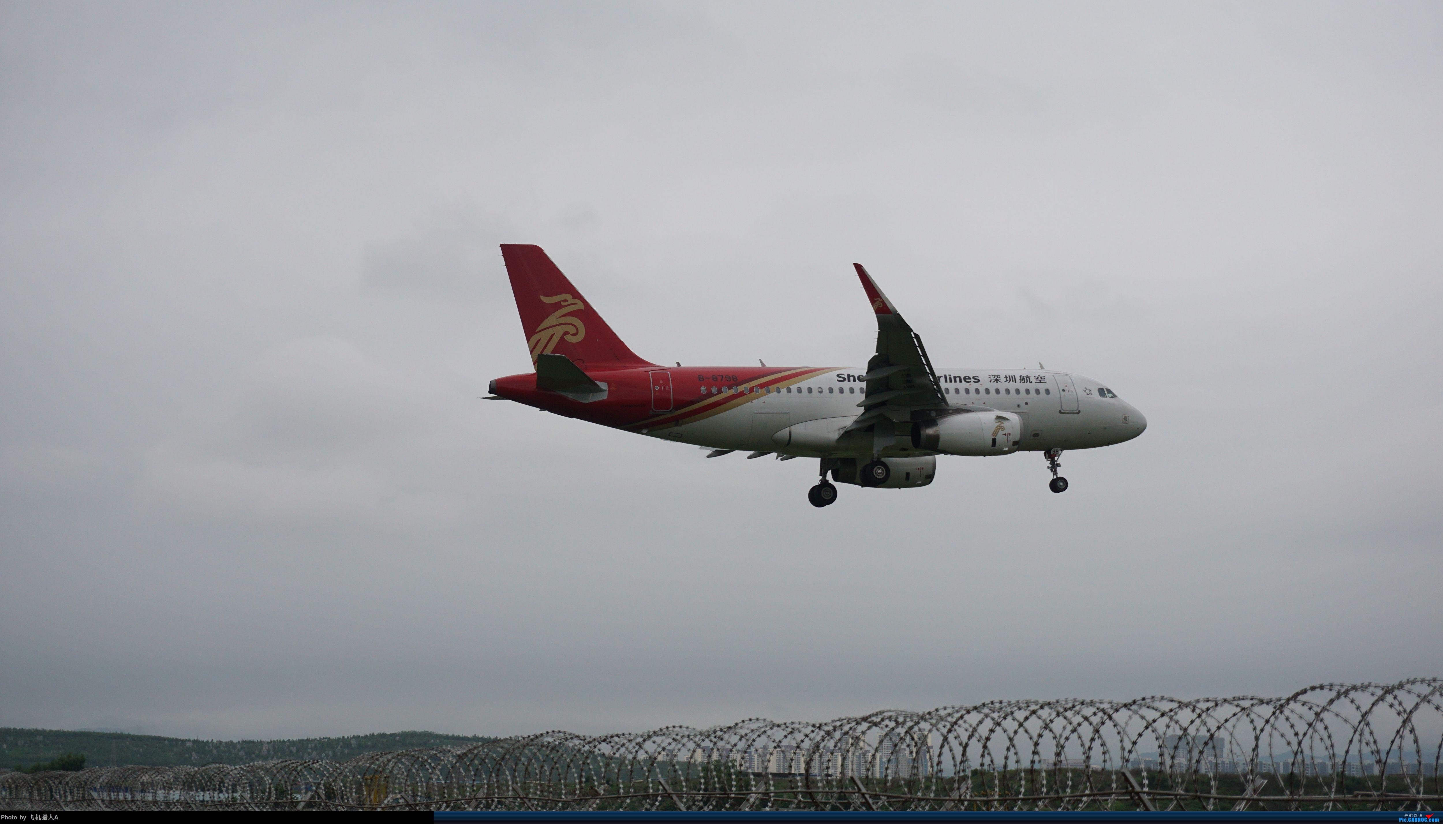 ZAT深圳航空319