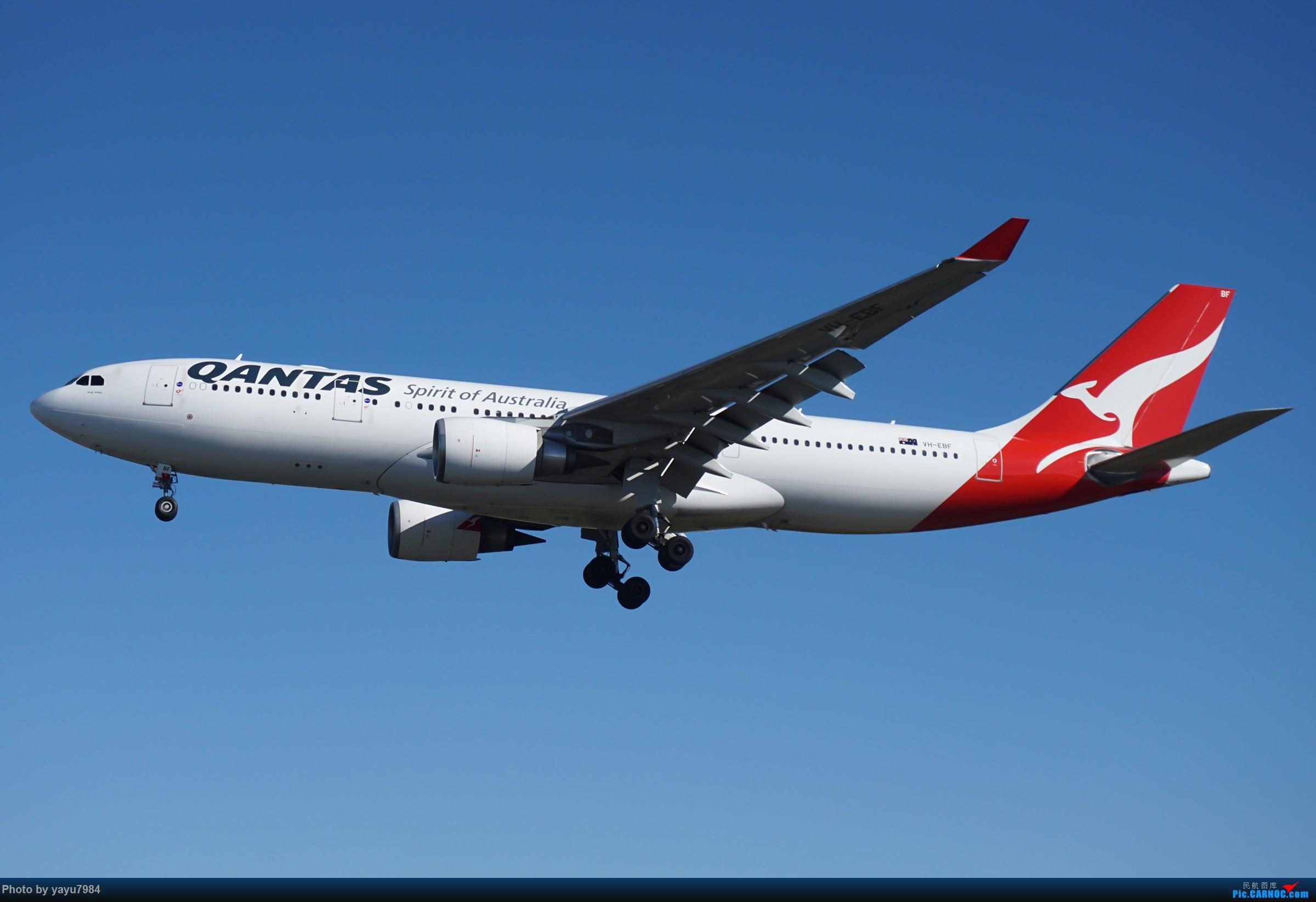 Re:[原创][SYD] 晨悉尼,16R扎堆到达 AIRBUS A330-200 VH-EBF 澳大利亚悉尼金斯福德·史密斯机场