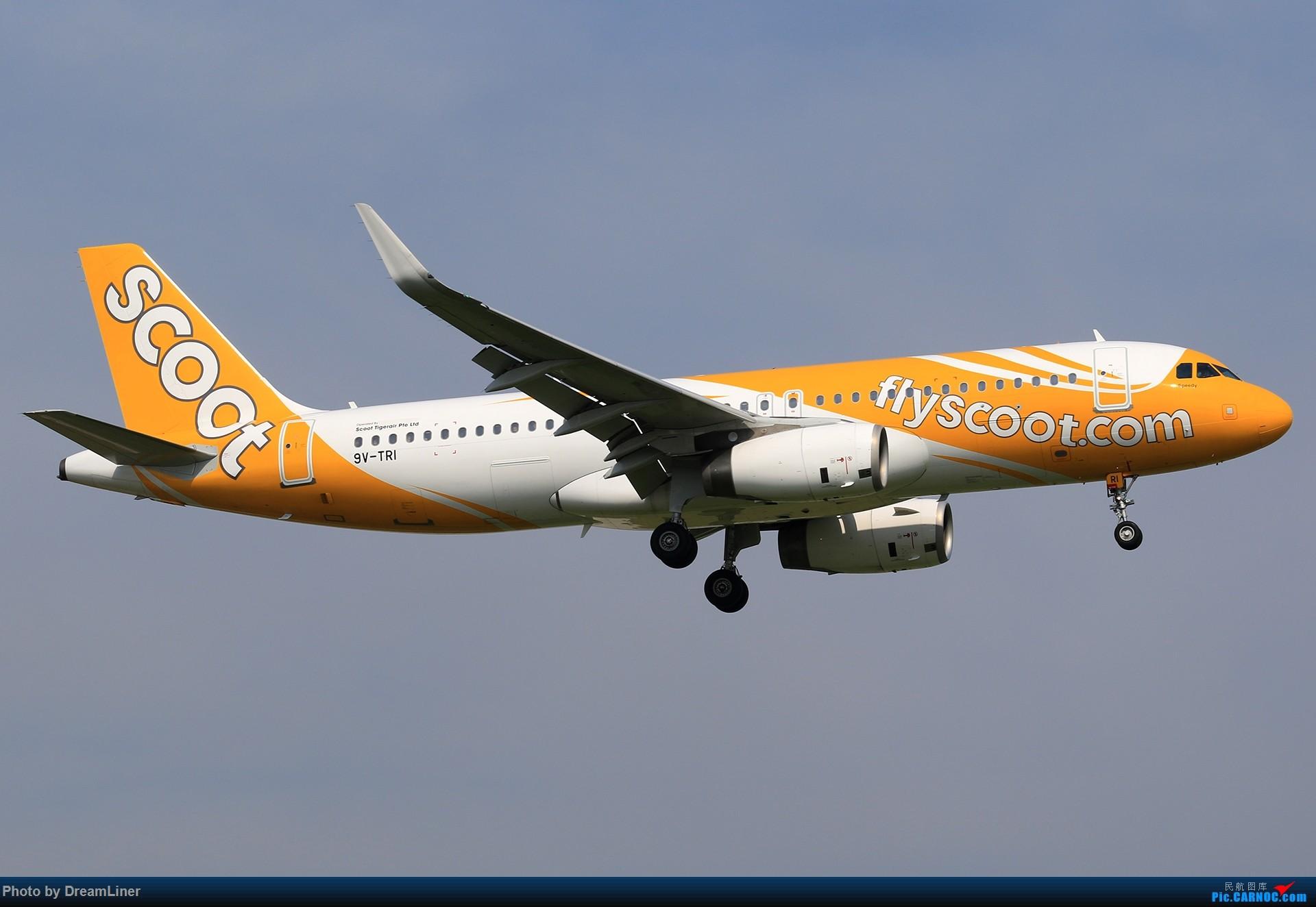 [原创]【CAN】(7.17)发点小家伙 AIRBUS A320-200 9V-TRI 中国广州白云国际机场