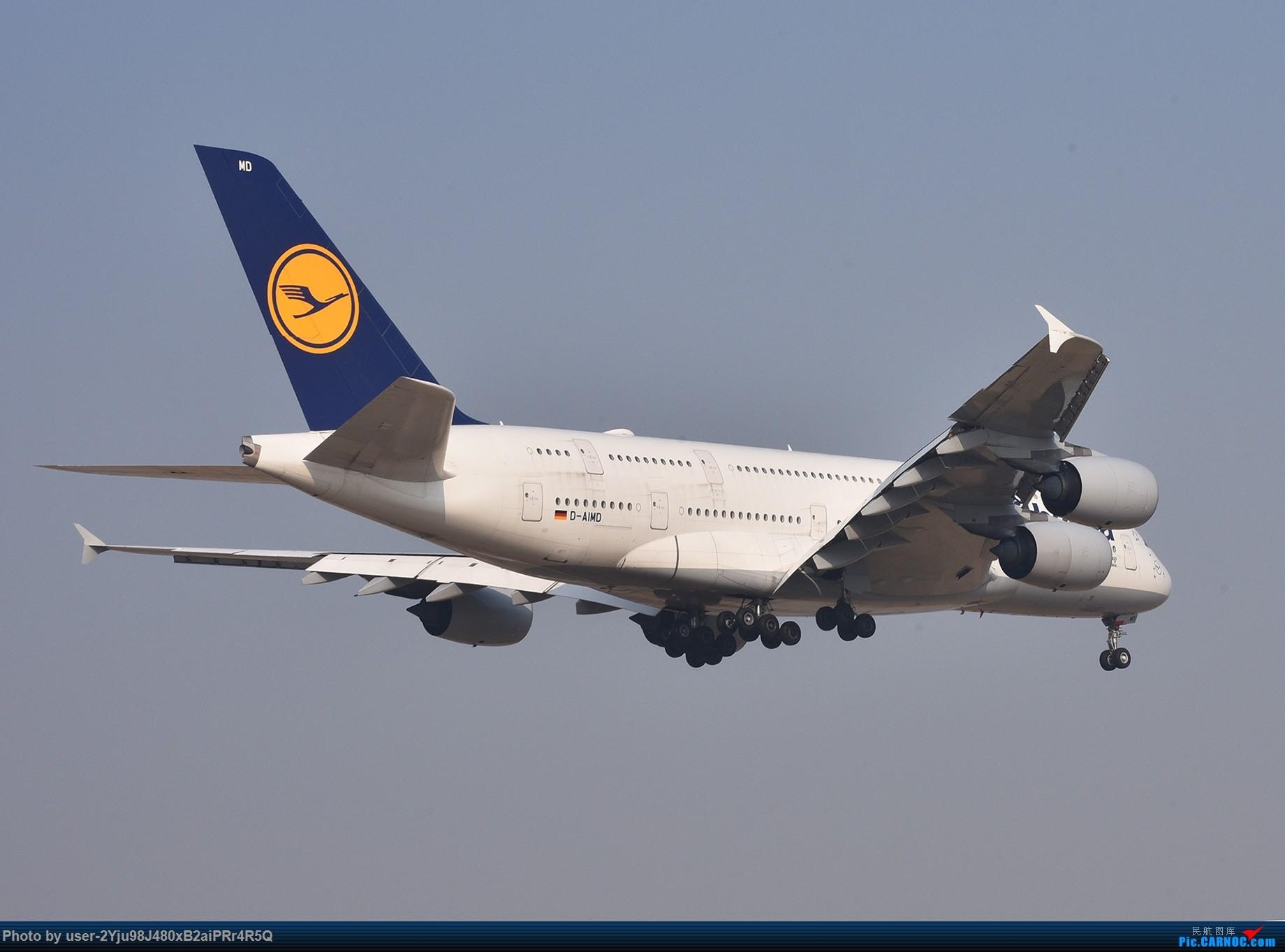 Re:[原创]一年前某天早上的PEK|01垃圾楼 AIRBUS A380-800 D-AIMD