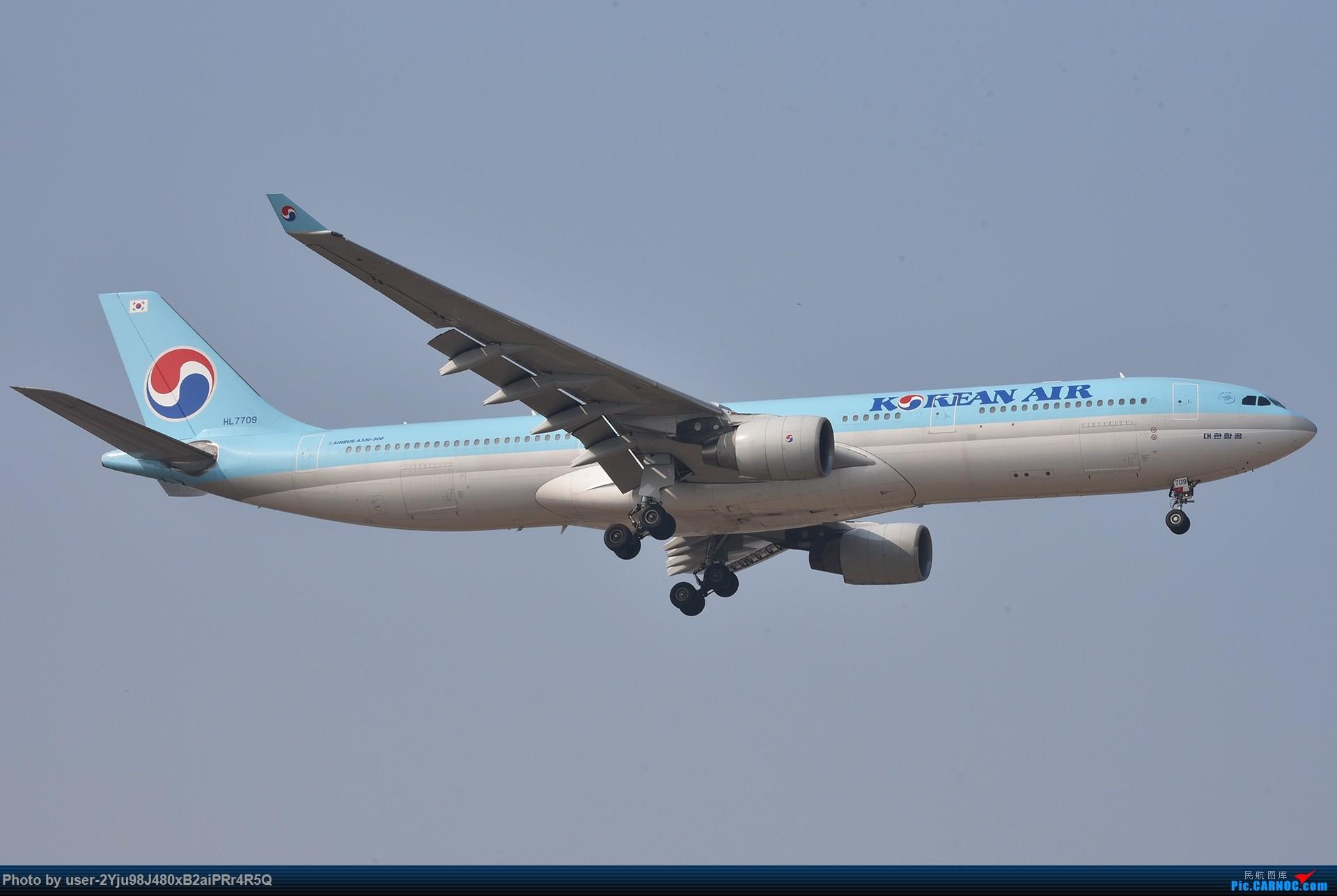 Re:[原创]一年前某天早上的PEK|01垃圾楼 AIRBUS A330-300 HL7709