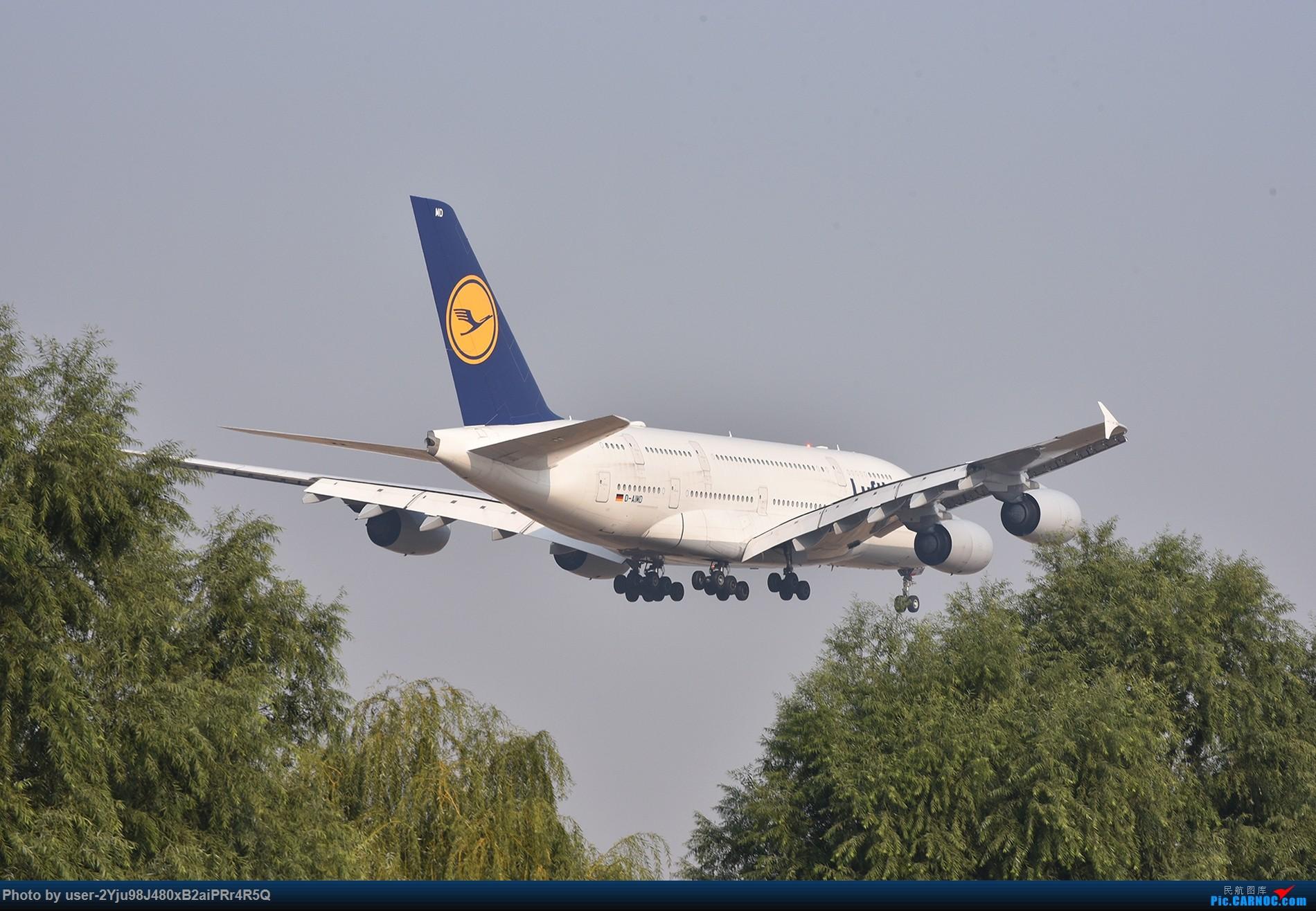 Re:[原创]一年前某天早上的PEK|01垃圾楼 AIRBUS A380 D-AIMD