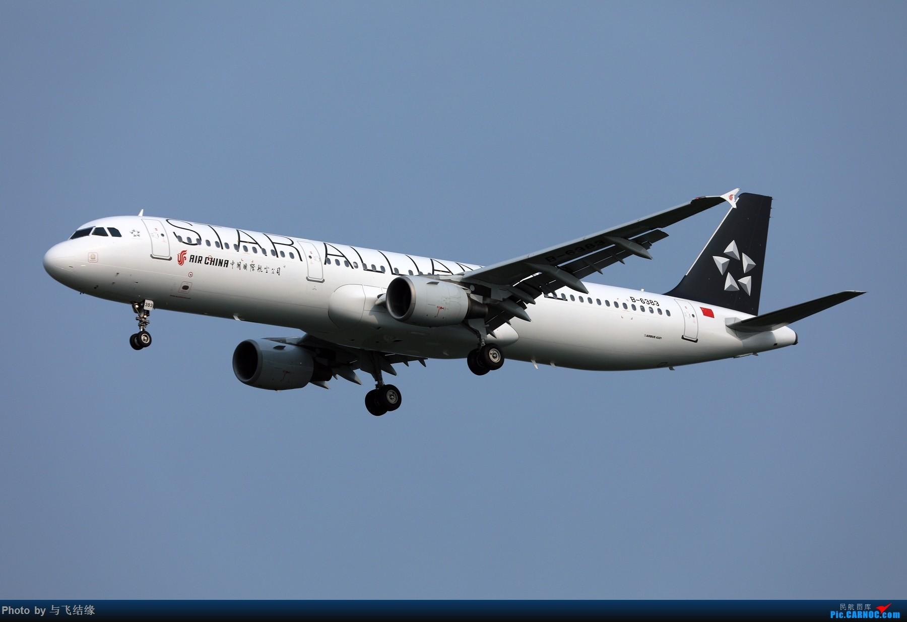 中国国际航空Airbus A321-200星空联盟涂装B-6383. AIRBUS A321-200 B-6383 中国北京首都国际机场