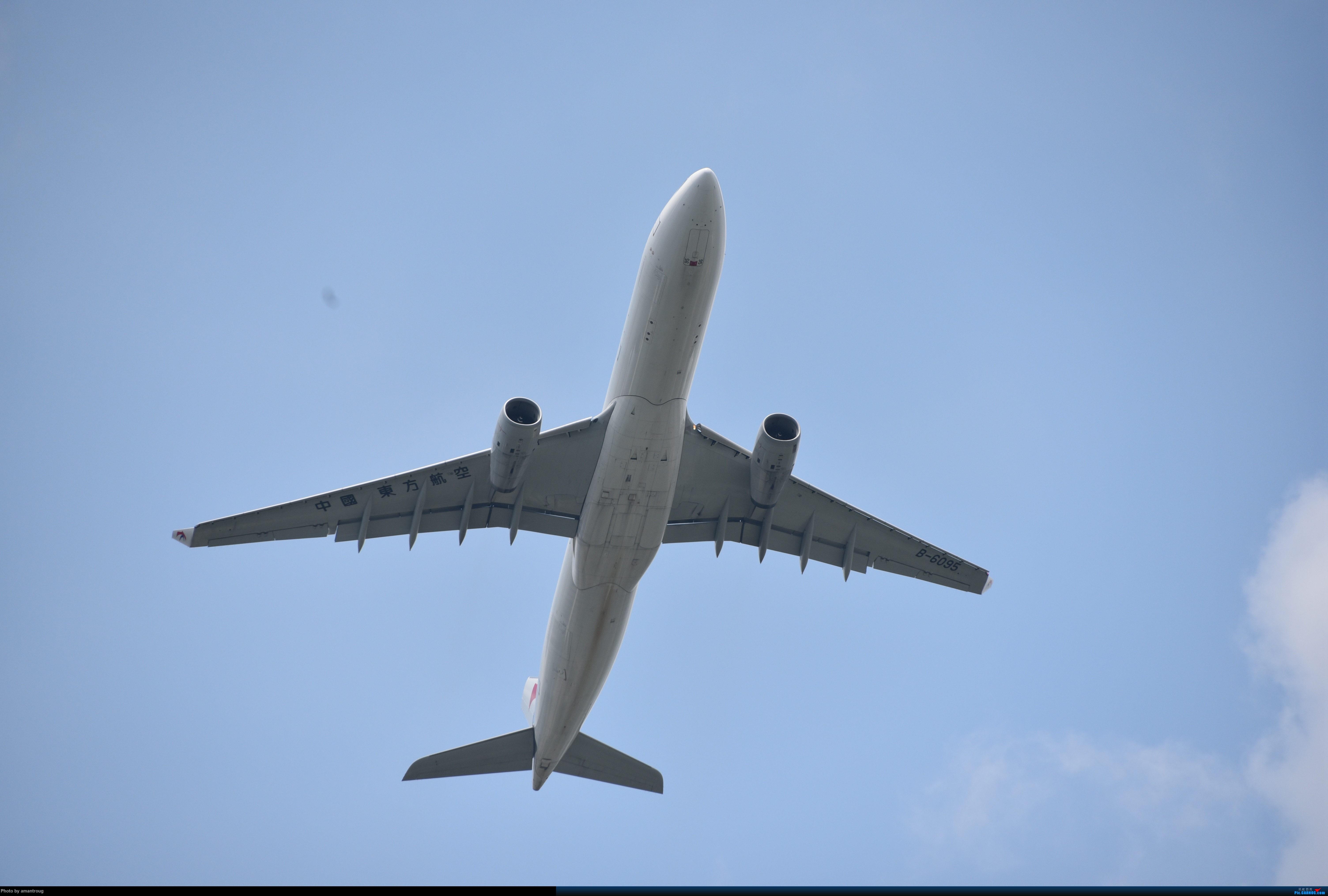 [原创]ZSSS 肚皮一组 AIRBUS A330-300 B-6095 中国上海虹桥国际机场