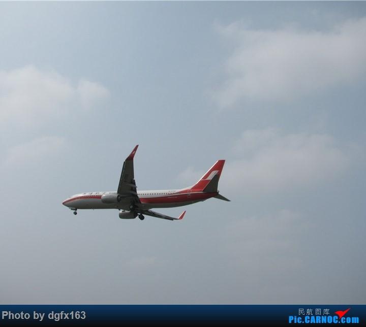 Re:[原创]【dgfx163的拍机(3)】令我失望的东航+让我路转粉的山东航空 顶着大连百年不遇的38度高温拍机 BOEING 737-800 B-5799 中国大连国际机场
