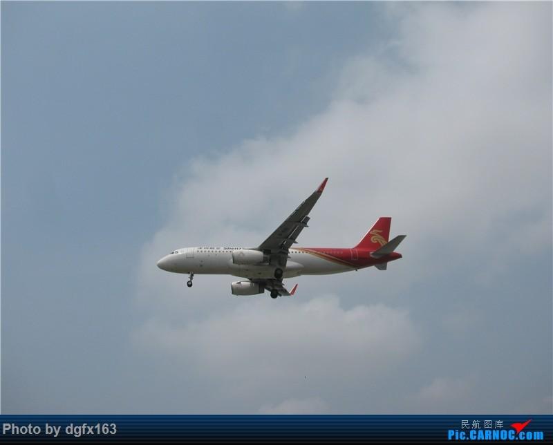 Re:[原创]【dgfx163的拍机(3)】令我失望的东航+让我路转粉的山东航空 顶着大连百年不遇的38度高温拍机 AIRBUS A320-200 B-8181 中国大连国际机场