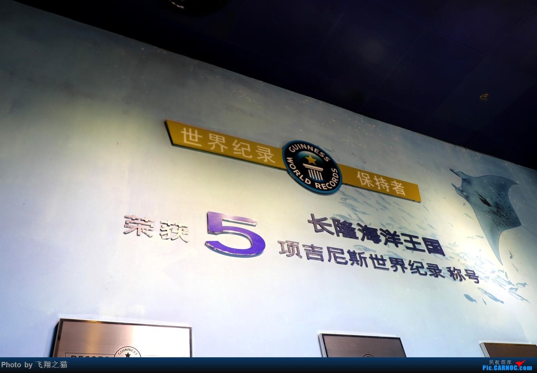Re:[原创]飞翔之猫游记(2018暑期环珠港澳深巡游之上集)