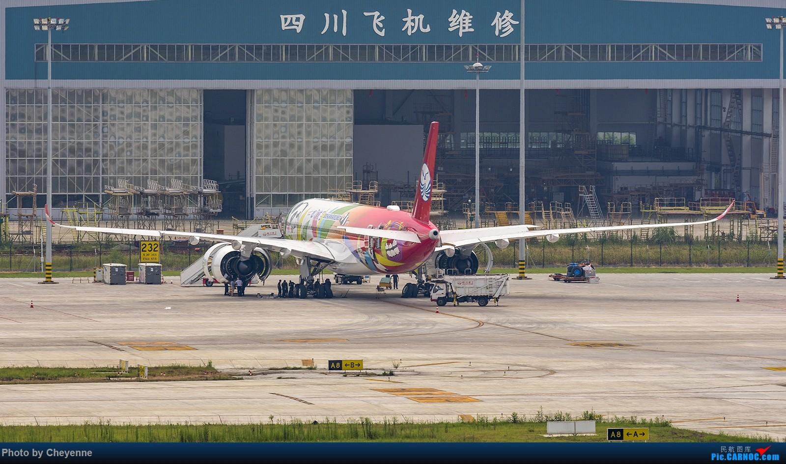 Re:[原创]蓉卢兹之日常 AIRBUS A350-900 B-301D 中国成都双流国际机场