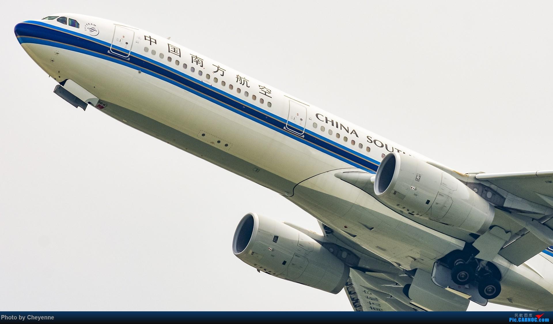 Re:[原创]蓉卢兹之日常 AIRBUS A330-300 B-1065 中国成都双流国际机场