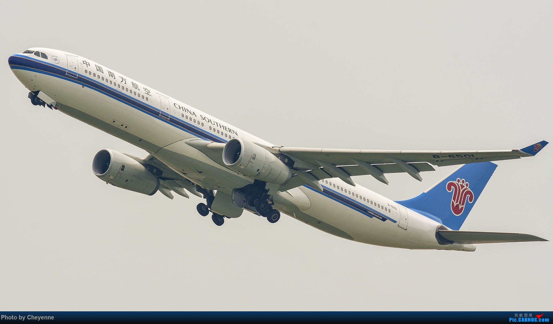 Re:[原创]蓉卢兹之日常 AIRBUS A330-300 B-6501 中国成都双流国际机场