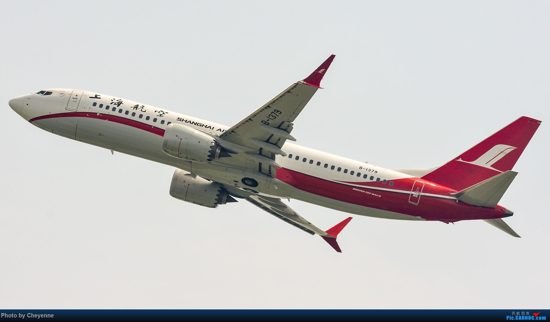 Re:[原创]蓉卢兹之日常 BOEING 737MAX-8 B-1379 中国成都双流国际机场