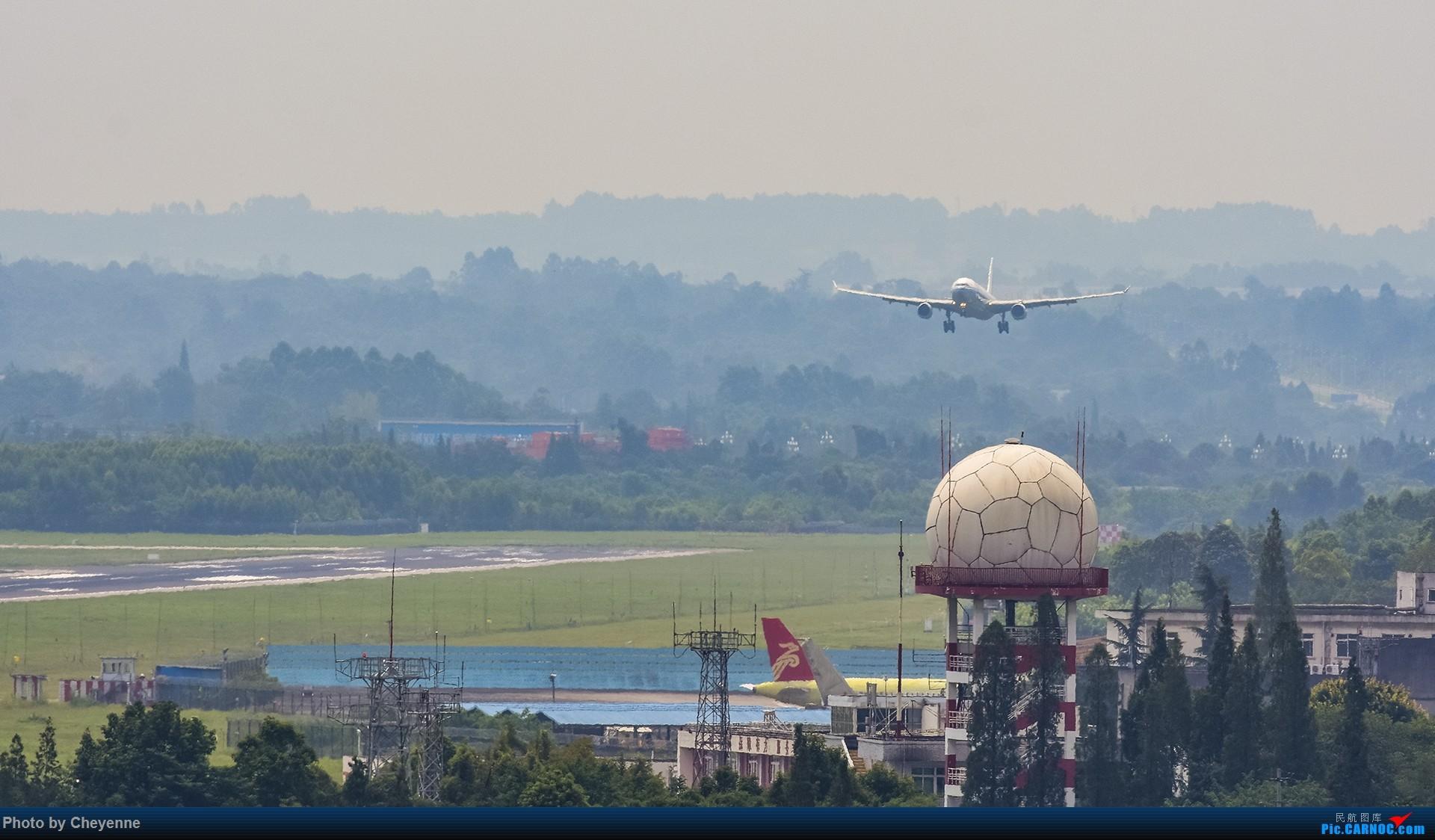 Re:[原创]蓉卢兹之日常 AIRBUS A330-300 B-5901 中国成都双流国际机场