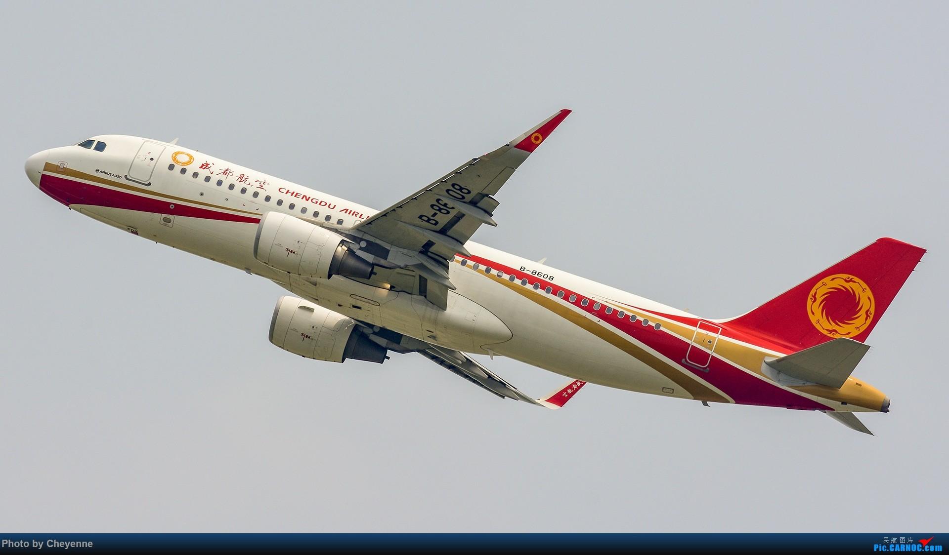 Re:[原创]蓉卢兹之日常 AIRBUS A320-200 B-8608 中国成都双流国际机场