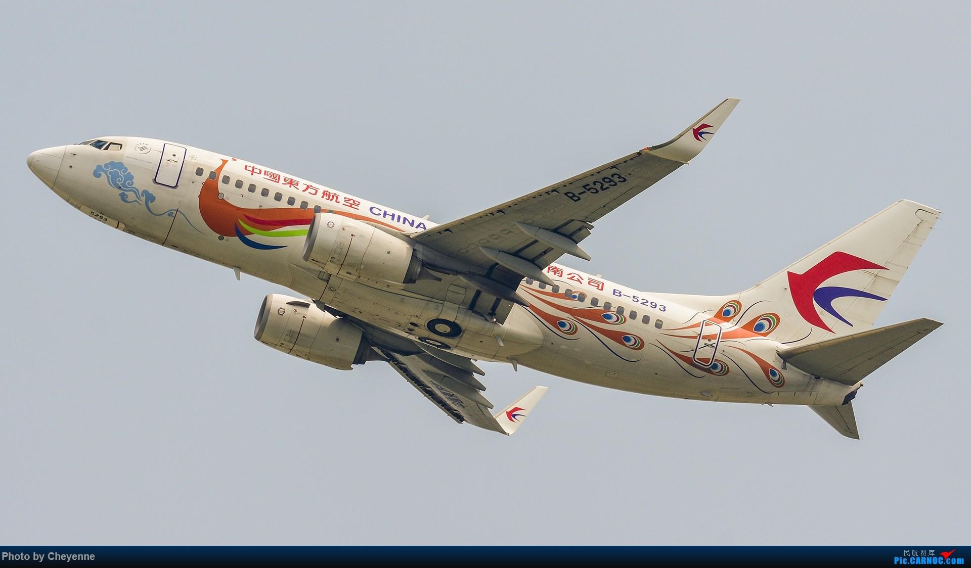 Re:[原创]蓉卢兹之日常 BOEING 737-700 B-5293 中国成都双流国际机场