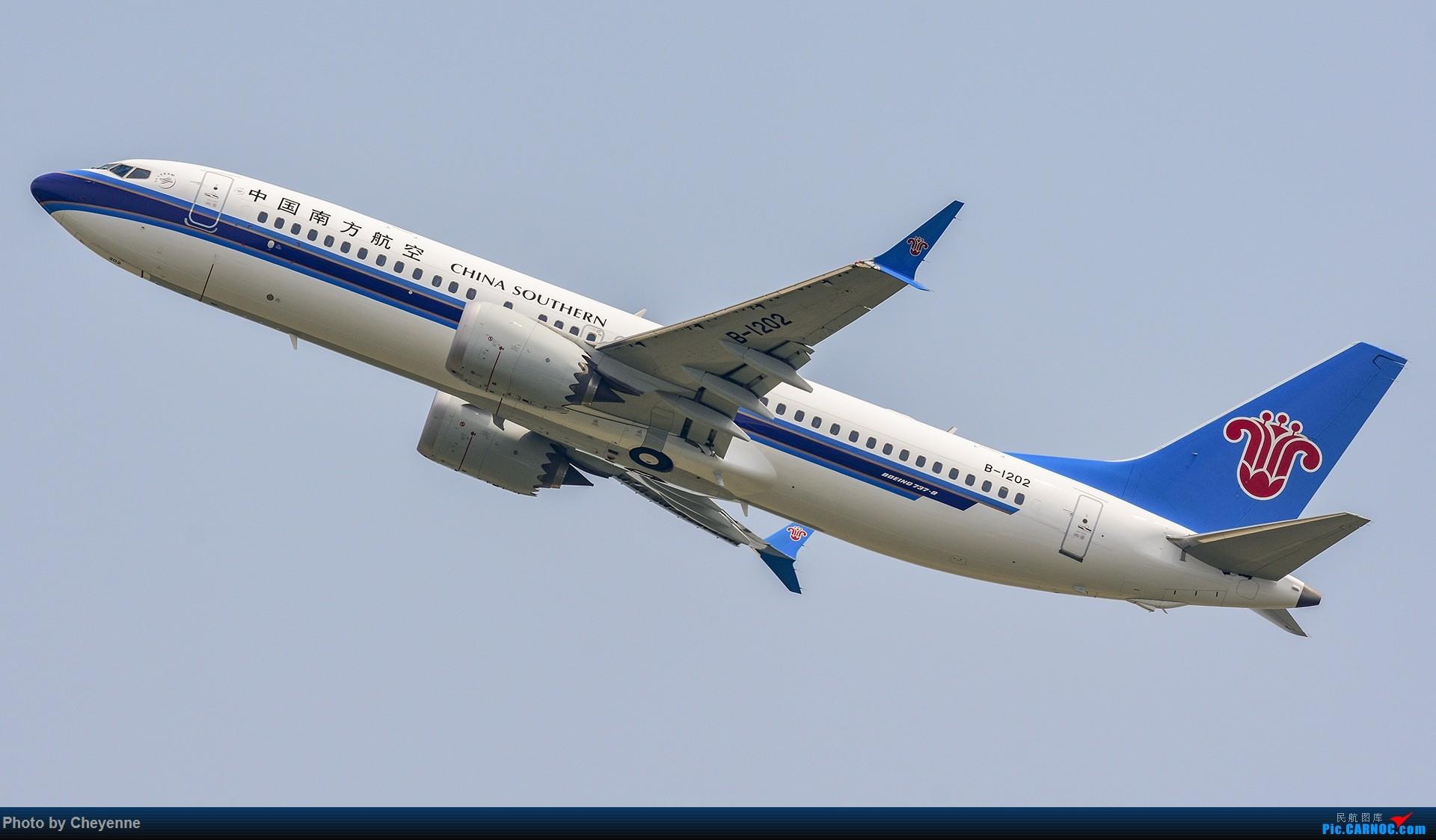 Re:[原创]蓉卢兹之日常 BOEING 737MAX-8 B-1202 中国成都双流国际机场