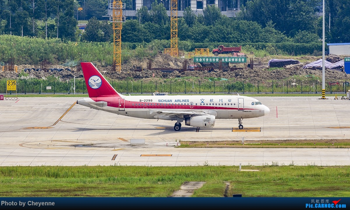 Re:[原创]蓉卢兹之日常 AIRBUS A319-100 B-2299 中国成都双流国际机场