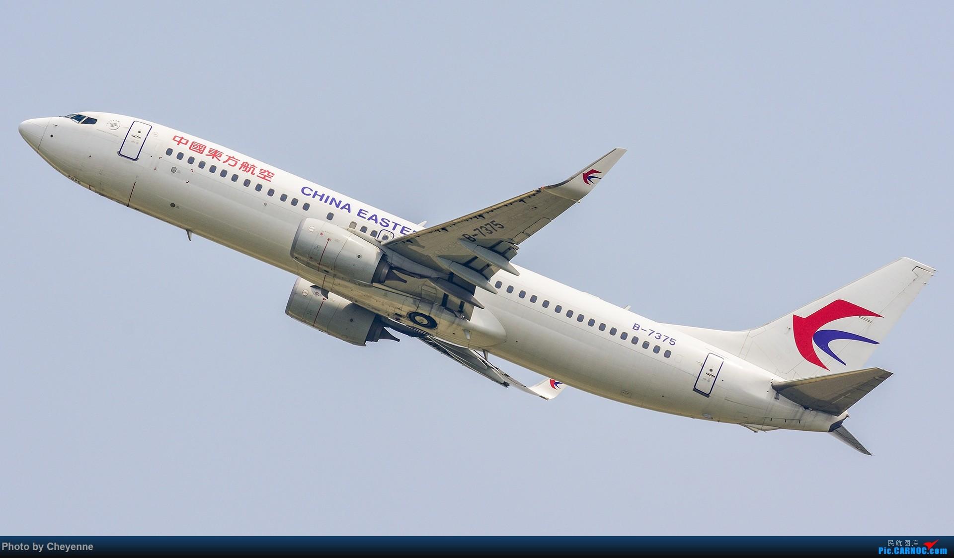Re:[原创]蓉卢兹之日常 BOEING 737-800 B-7375 中国成都双流国际机场