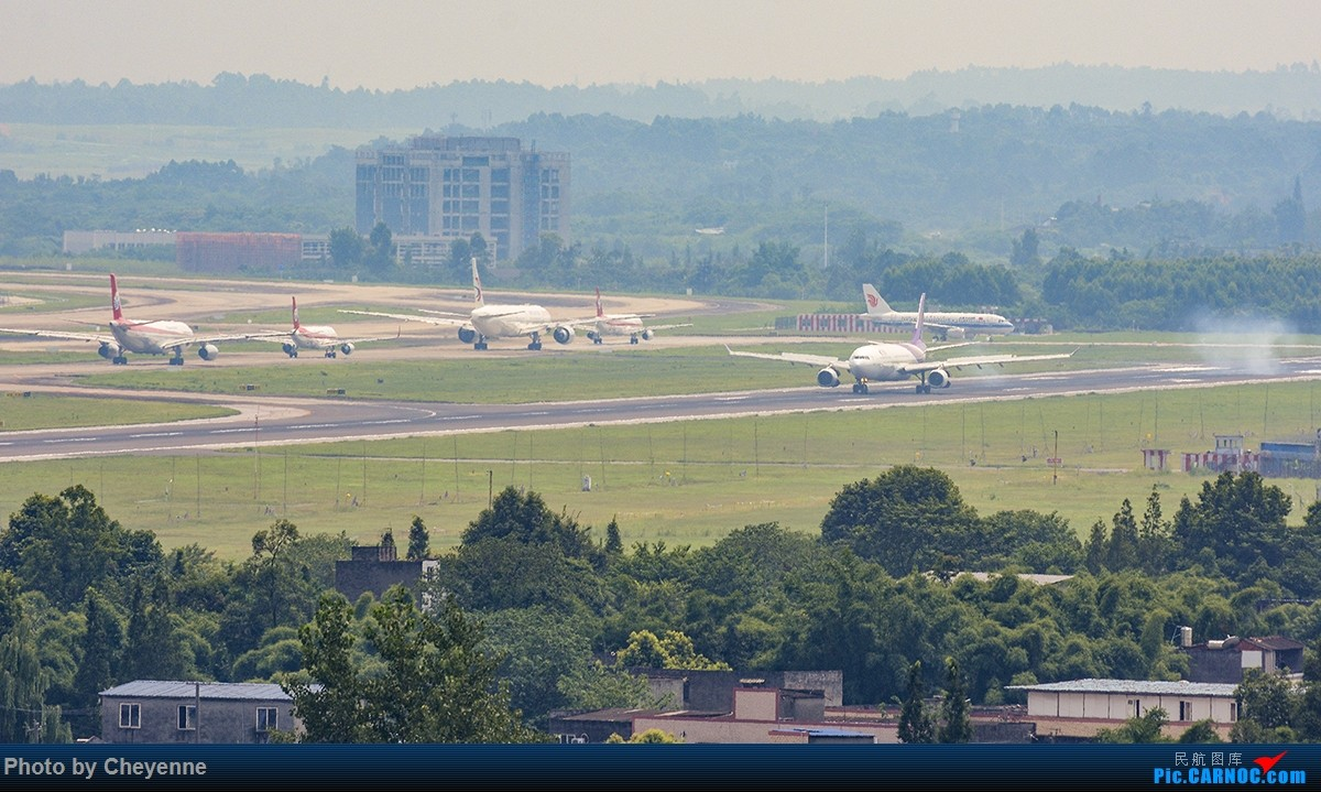 Re:[原创]蓉卢兹之日常 AIRBUS A330-300 HS-TAT 中国成都双流国际机场