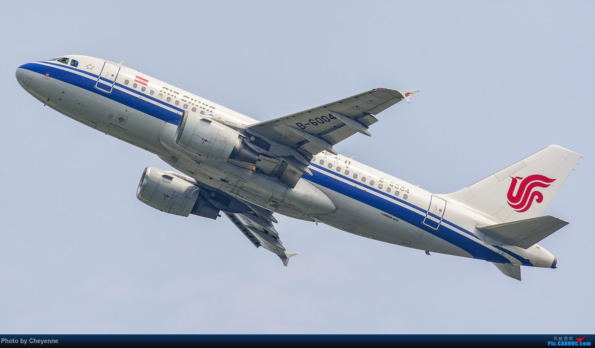 Re:[原创]蓉卢兹之日常 AIRBUS A319-100 B-6004 中国成都双流国际机场