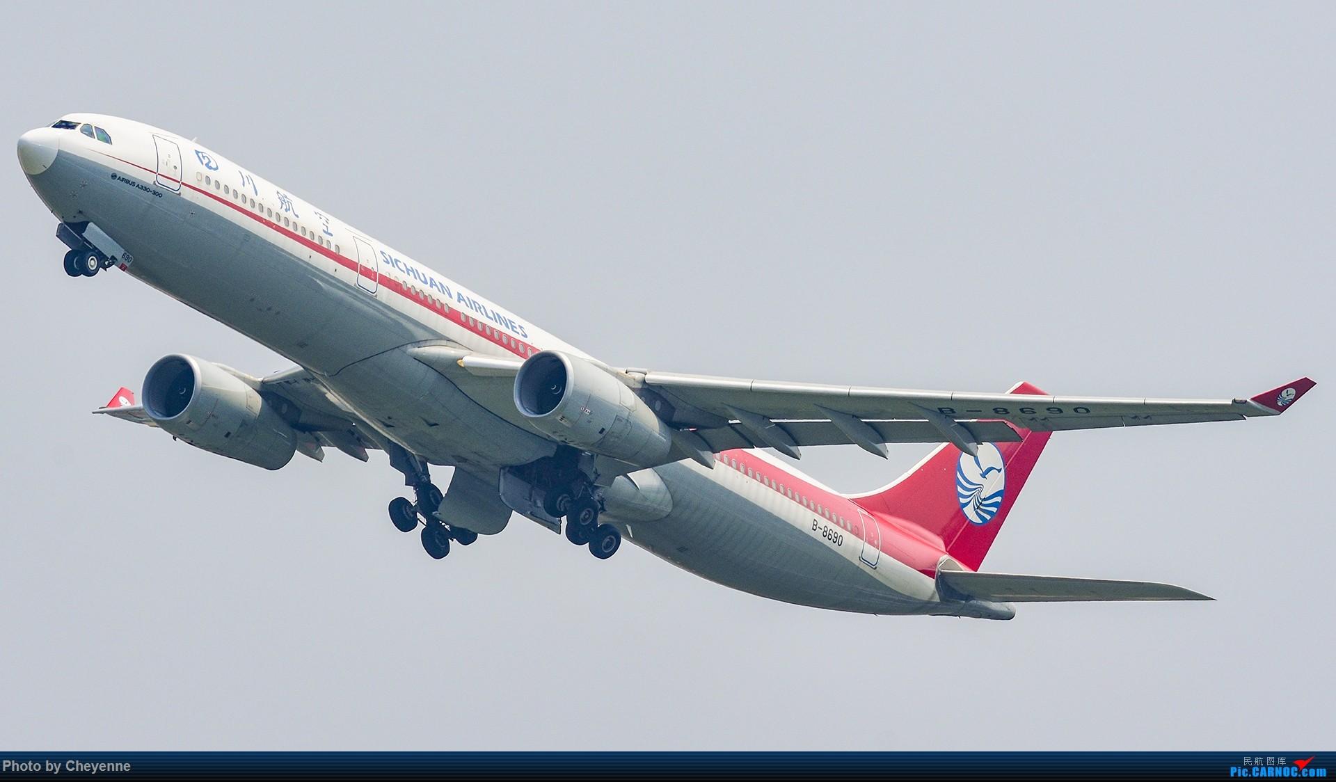 Re:[原创]蓉卢兹之日常 AIRBUS A330-300 B-8690 中国成都双流国际机场
