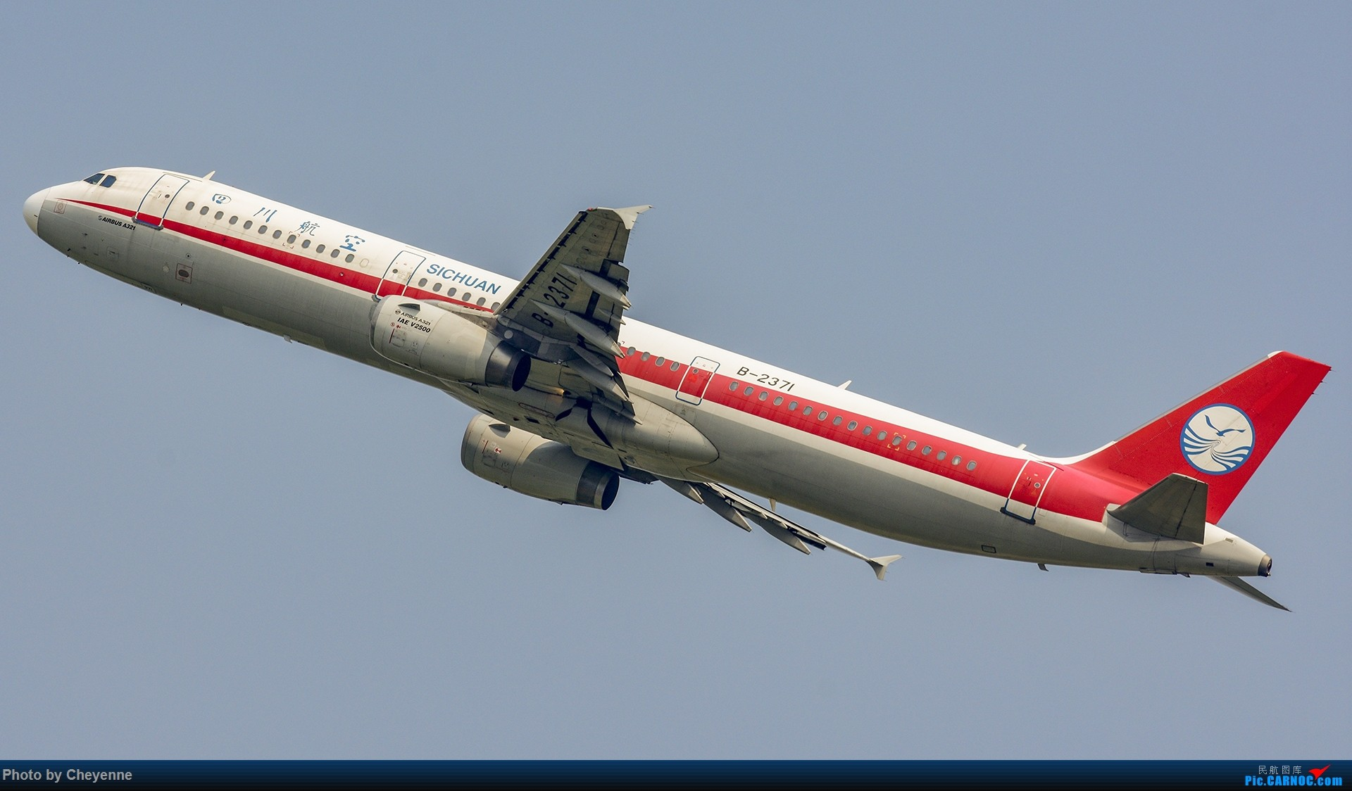 Re:[原创]蓉卢兹之日常 AIRBUS A321-200 B-2371 中国成都双流国际机场