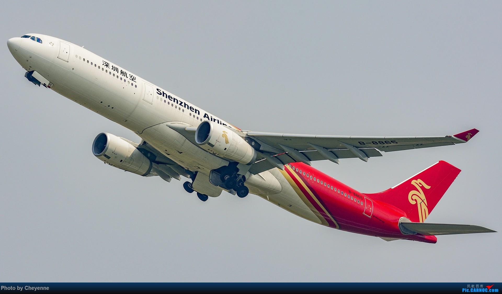 Re:[原创]蓉卢兹之日常 AIRBUS A330-300 B-8865 中国成都双流国际机场